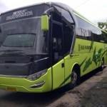 Big Bus 2014