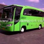 Bus Kecil 30 seat