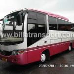 Bus Kecil 35 seat