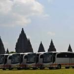 Big Bus 2011